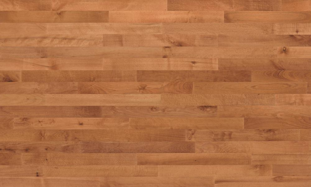 Beech Hardwood Floors Sylvared